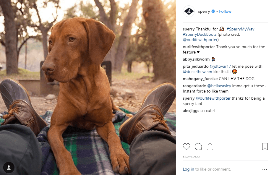 Content Marketing Tactics Every Instagram Brand Needs to Know | SEO WEB AGENCY